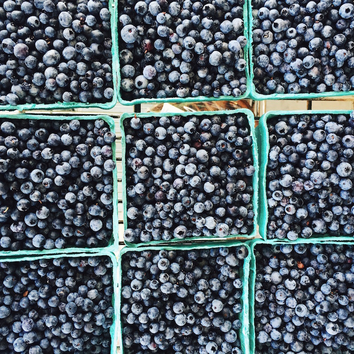 fresh maine blueberries