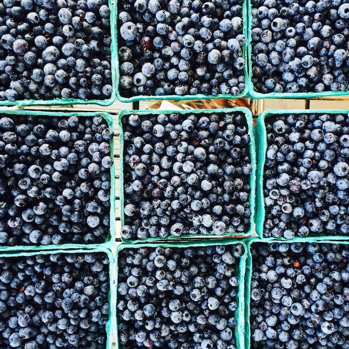 Maine Farmers Market Blueberries