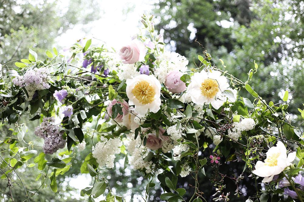 Putnam and Putnam - Flowers 4