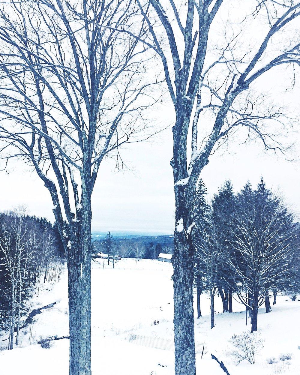 Stowe Vermont - January