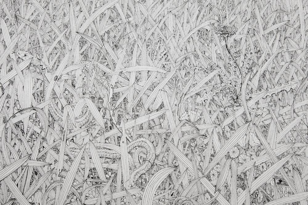 Grass #3 (detail)