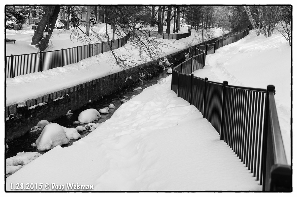 Running fences.  Fresh snow.