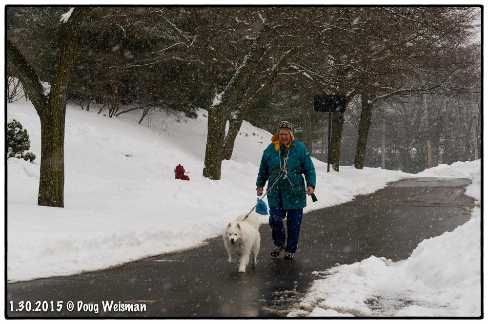 Man walks dog walks man.