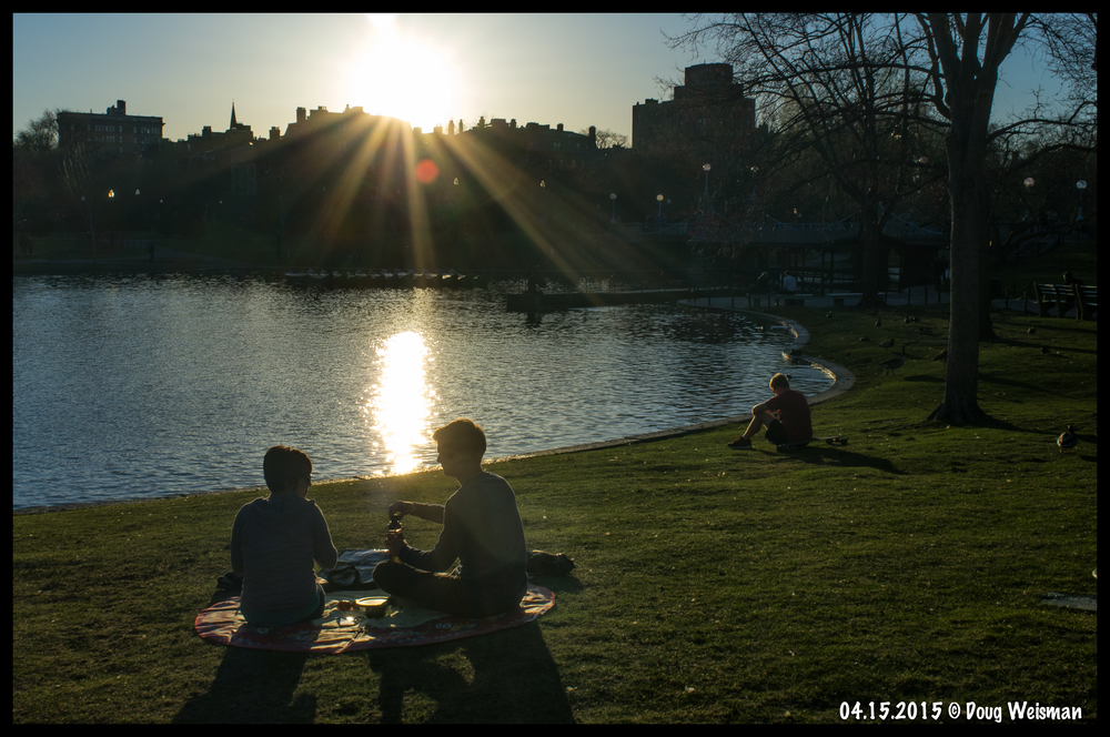 Spring. Sunset. PIcnic. Public Gardens.