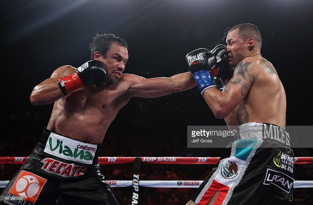 Juan Manuel   Marquz   in his last bout in May 2014 against Mike Alvarado. Photo: Jeff Gross/Getty Images