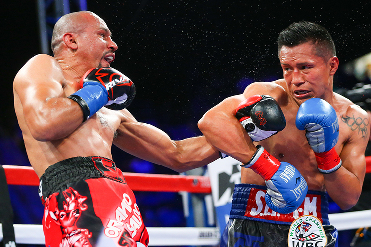 Orlando Salido and Francisco Vargas trade punches in the 2016 fight of the year. Photo: Ed Mulholland/HBO