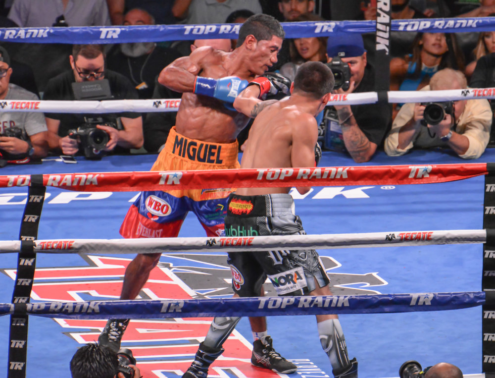 Oscar Valdez and Miguel Marriaga put on a great fight for the fans. Oscar Valdez passed his toughest test to date and is ready for big things. Photo credit: Cynthia Saldaña/Frontproof Media