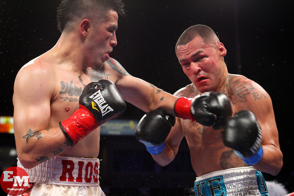 Brandon Rios and Mike Alvarado trade punches in their classic first encounter in October 2012. Photo: Ed Mulholland