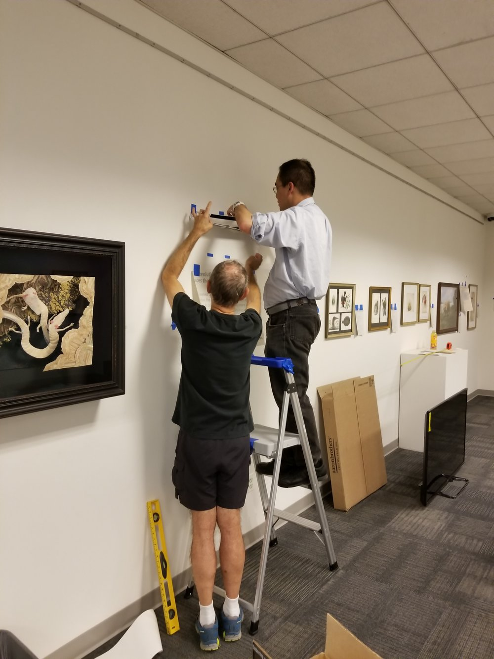 Exhibit Coordinator, Charles (on the ladder) and installation expert, Craig, are laying down the vinyl letters for the GNSI Juried Exhibition.