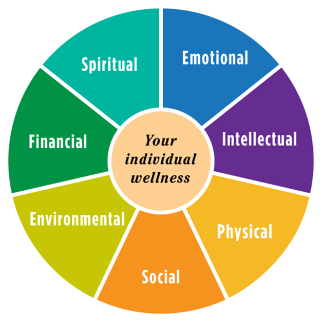 the impact of the life course in health and social care Background the life course approach to conceptualizing health care needs and services evolved from research documenting the important role early life events play in shaping an individual's health trajectory.