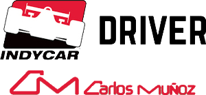 INDYCAR Race Driver