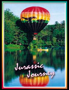 TRACY LEAVER flyjurassic@gmail.com