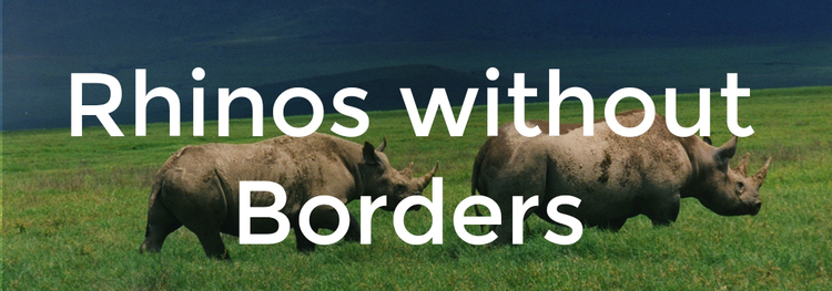 LEARN MORE ABOUT HOW YOU CAN HELP WITH THE RHINOS WITHOUT BORDERS PROJECT!