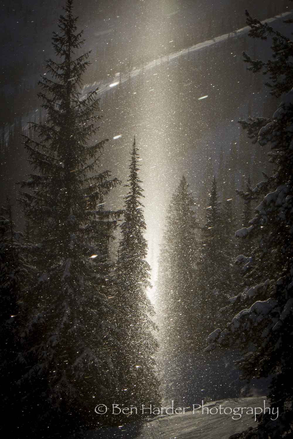"""Winter Wonderland"" - Schweitzer, ID"