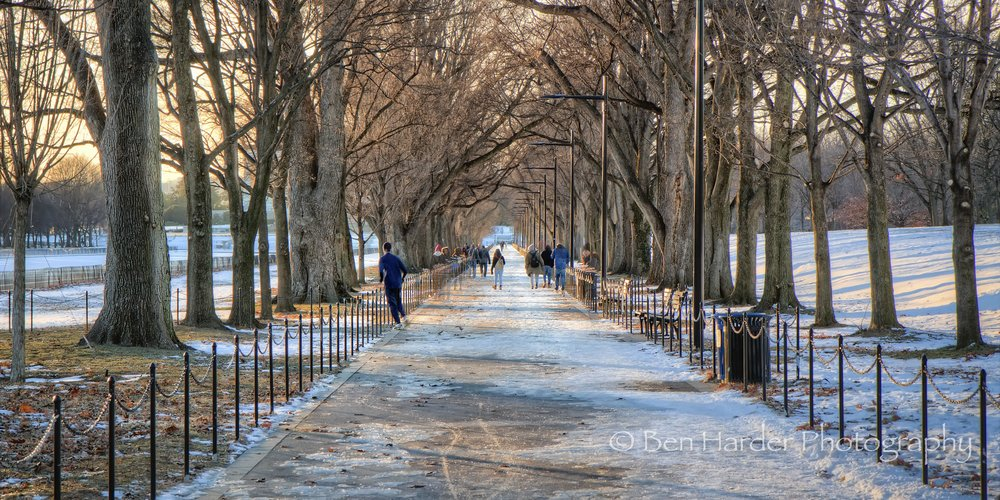 National Mall Pathway