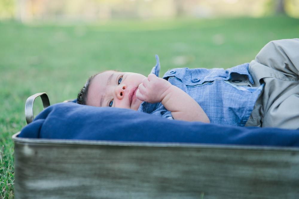 Baby Dennick-68.jpg