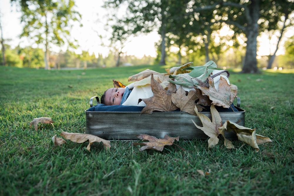 Baby Dennick-106.jpg