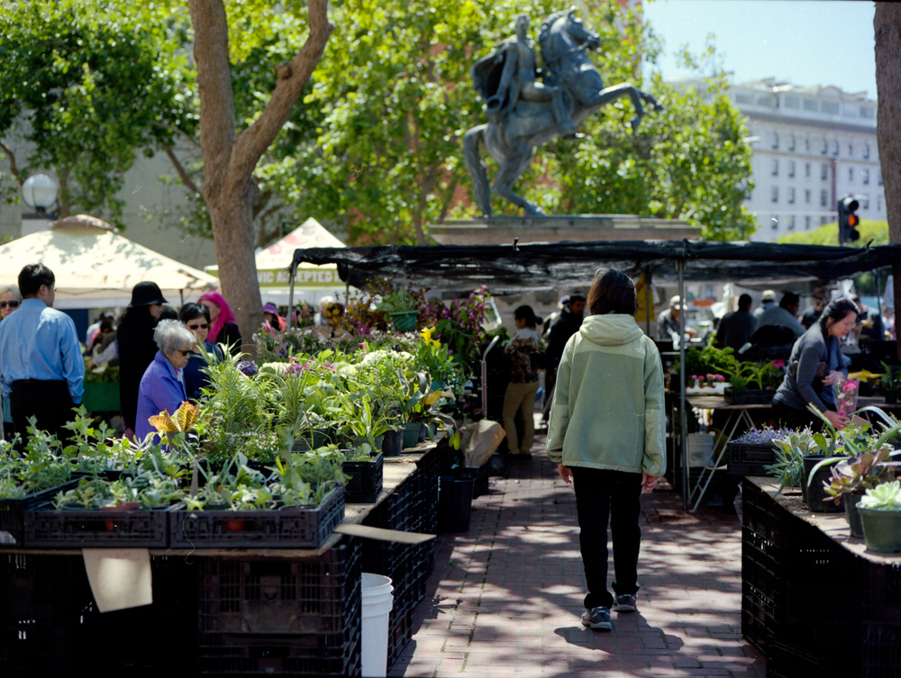 Civic Center is home to a farmers market. It is also a very diverse area with city workers, tech workers along with homeless people. I have experienced more police harassment here than anywhere else in the city.