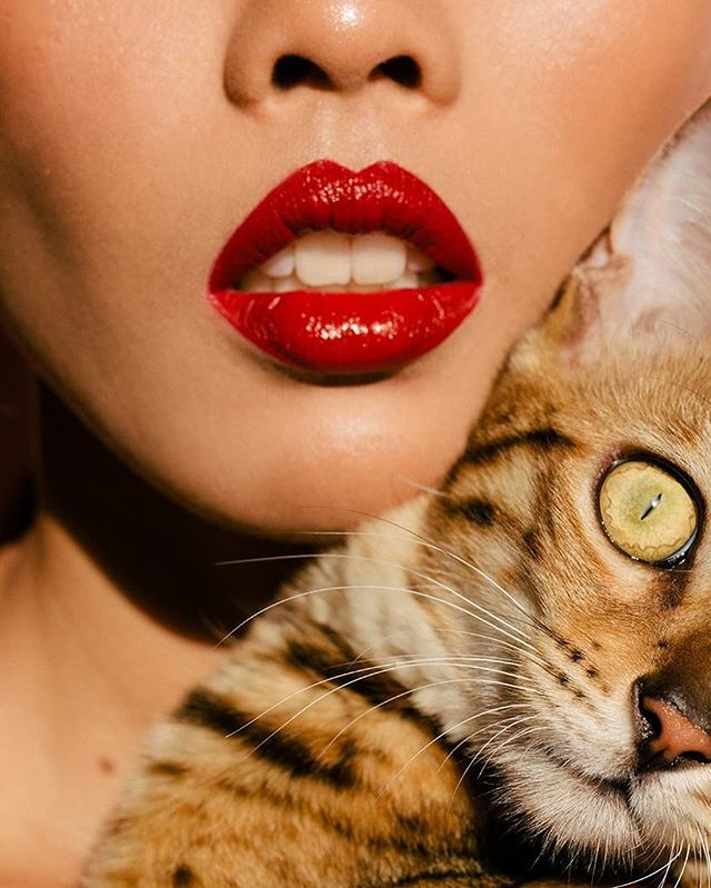 Penélope is stealing my scene (always) . . . . . . #me #แมว#เบงกอล#PenneTheBengal #cat#meow#bengal #catofinstagram #catlady #catwoman#catstagram #instacat#kittycat #instadaily #sexy #sexycat #nars #redlips #beauty #fashion #red #asiangirl