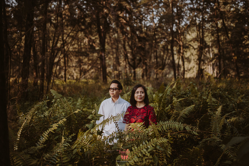 Sufi & Fatin Pre Wed-3.jpg