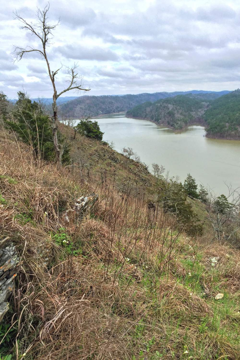 Broken Bow Lake between the slopes of the Ouachita Mountains