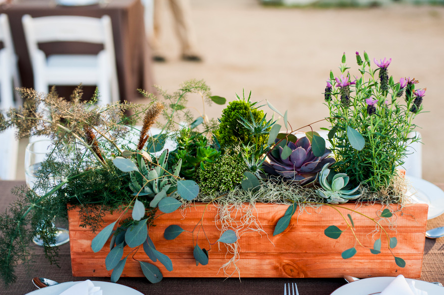 Bronze Fennel, Eucalyptus, lavender, thistle, succulents, and moss were used in many of the boxes.