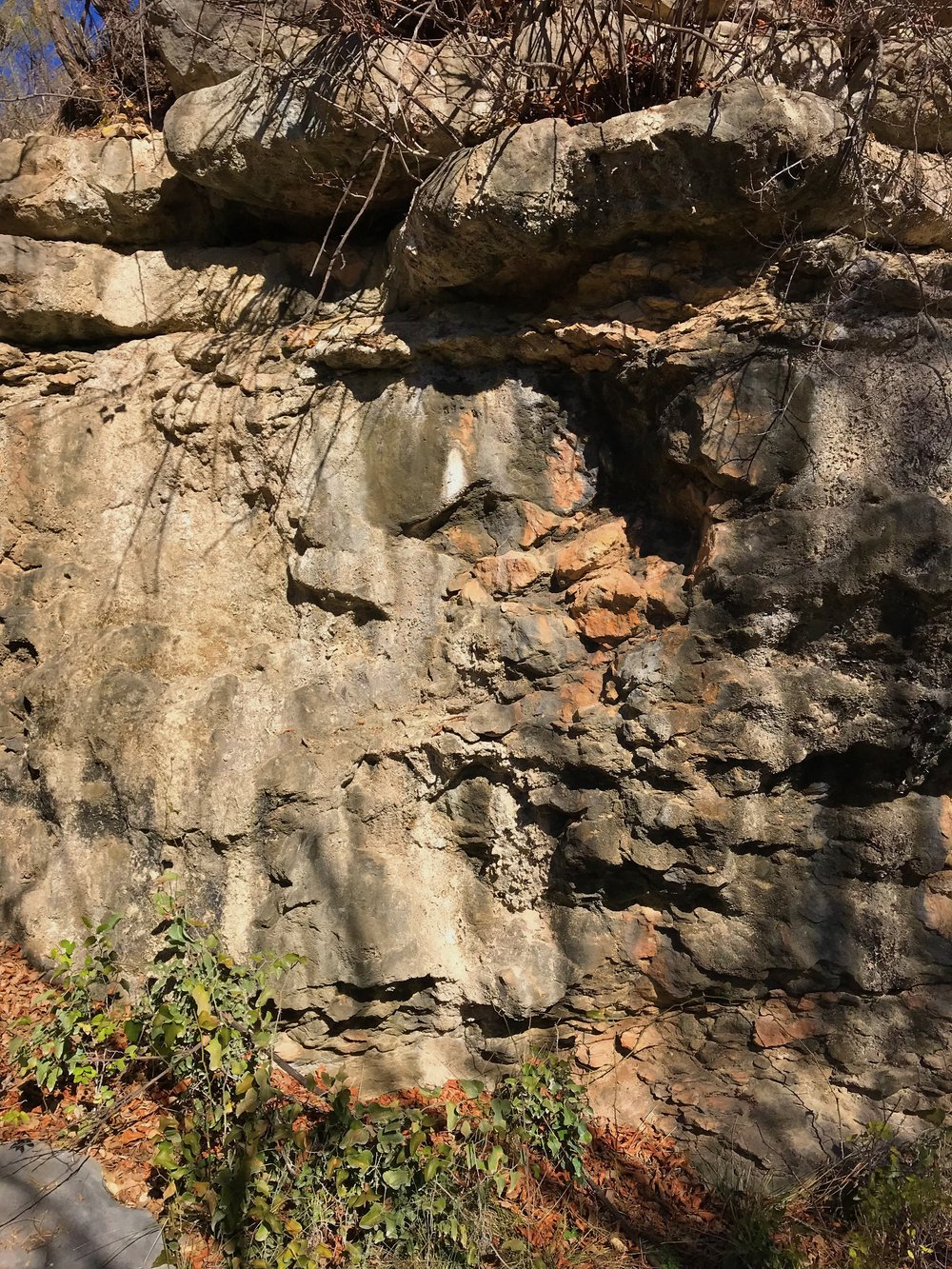 Limestone bluff with potential petroglyphs