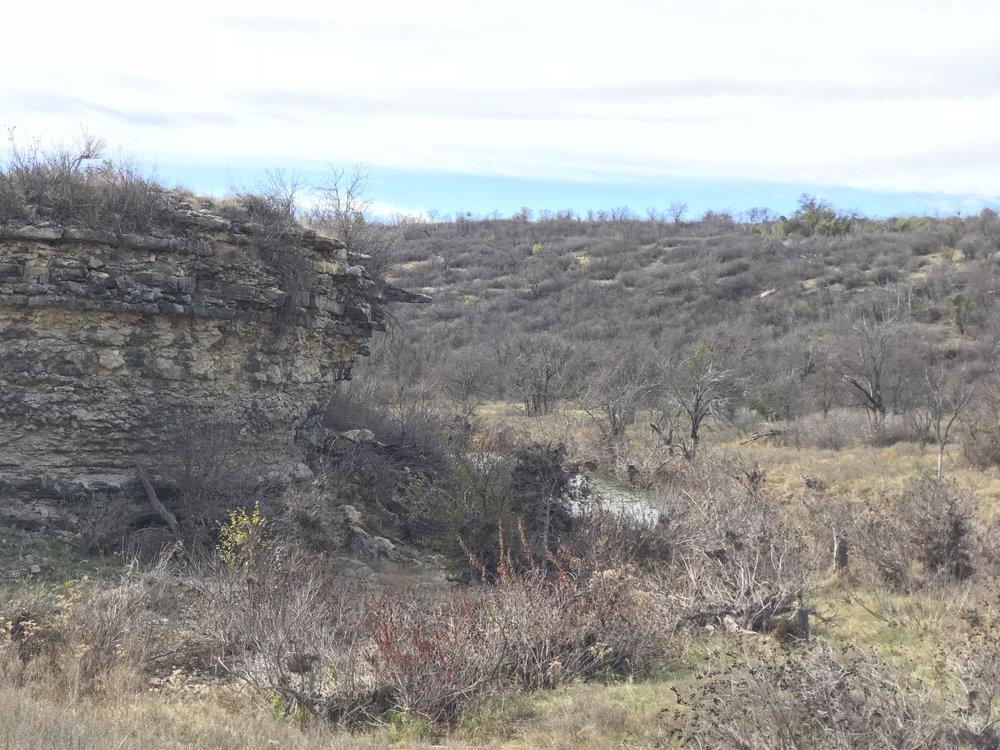 Limestone bluff along Ranger Creek