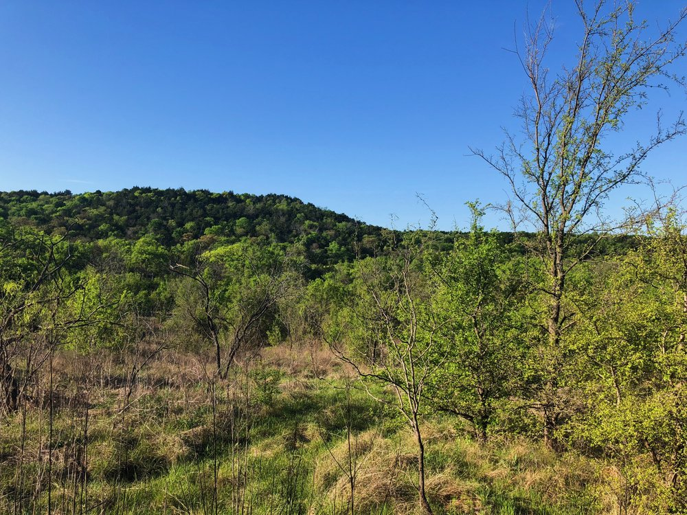 Elm, cedar, and oaks dominate the hilly landscape.