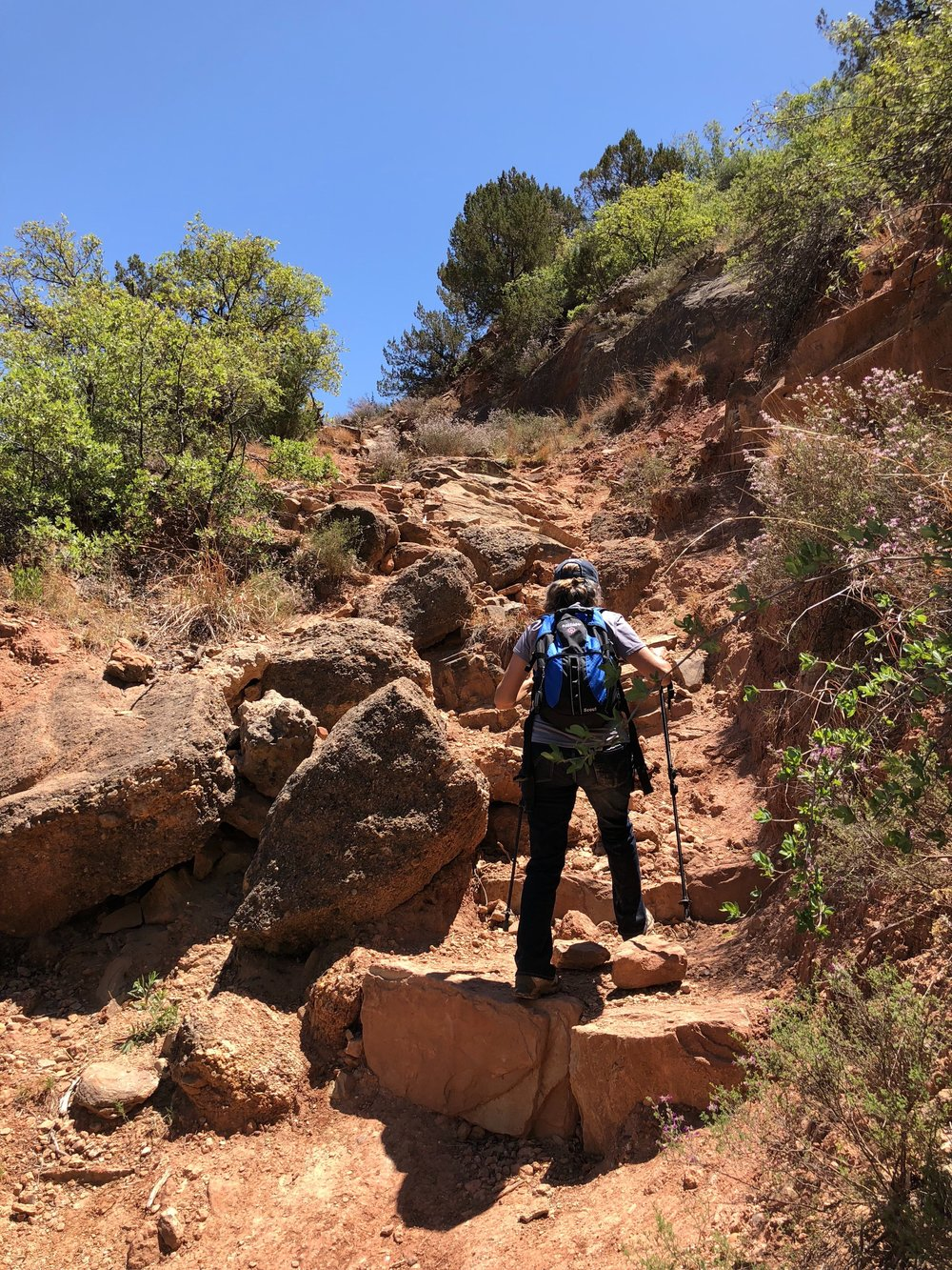 Steep incline along Upper Canyon Trail leaving Fern Cave