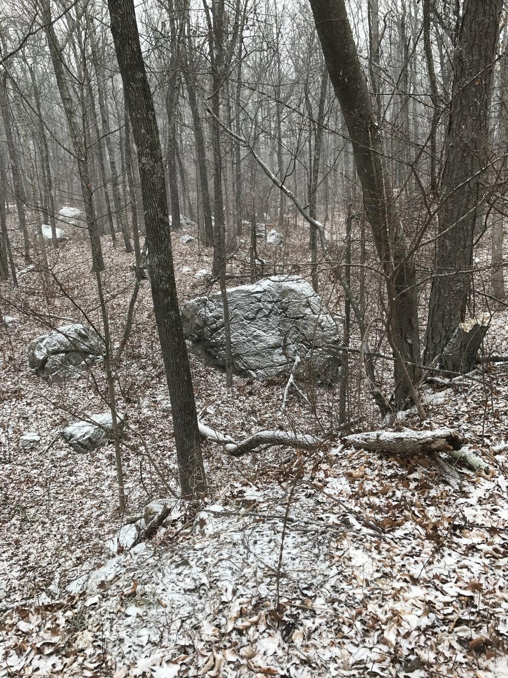 massive boulder (glacial erratic), going up to Horse Pond Mountain