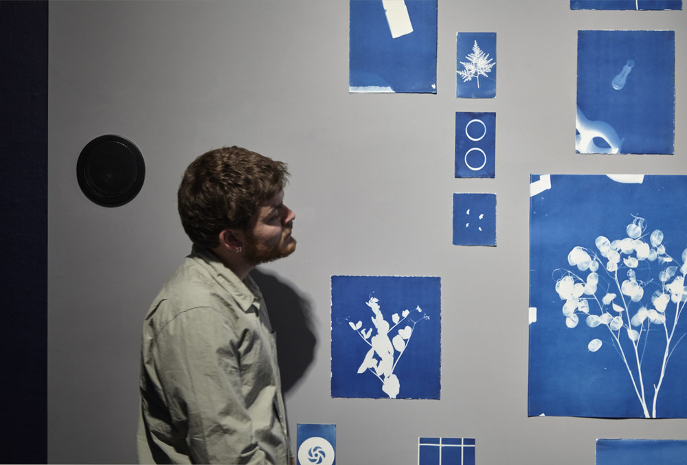 Jessie Brennan_Inside The Green Backyard (Opportunity Area)_2015-16_Installation_cyanotypes and oral recordings_detail.jpg