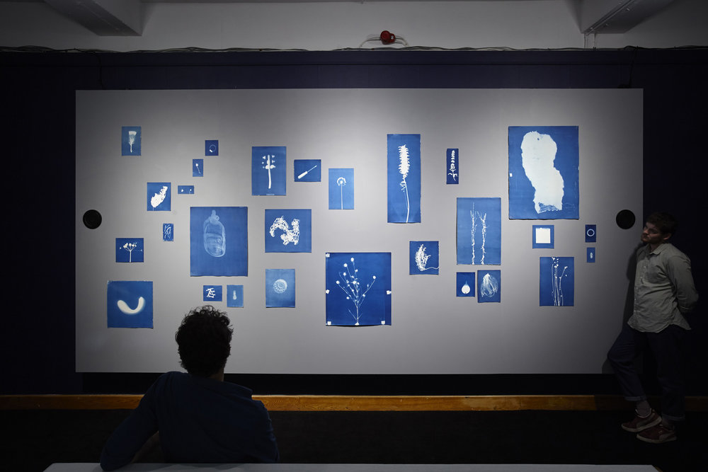 Jessie Brennan_Inside The Green Backyard (Opportunity Area)_2015-16_Installation_cyanotypes and oral recordings_56-13 Minutes.jpg