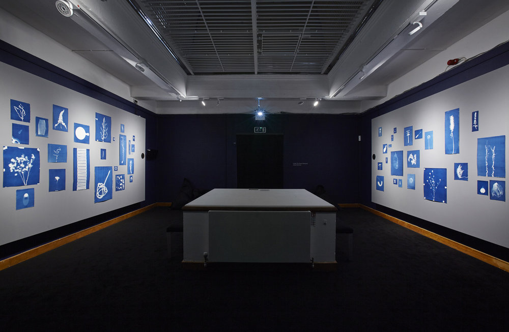 Jessie Brennan_Inside The Green Backyard (Opportunity Area)_2015-16_Installation_cyanotypes and oral recordings.jpg