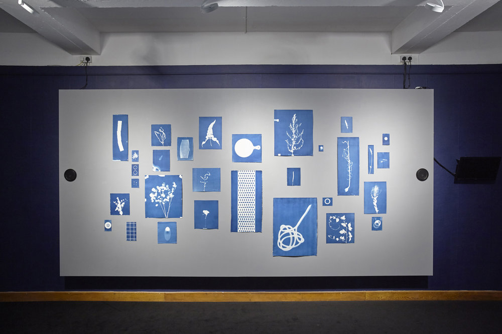 Jessie Brennan_Inside The Green Backyard (Opportunity Area)_2015-16_Installation_cyanotypes and oral recordings_panel 1.jpg