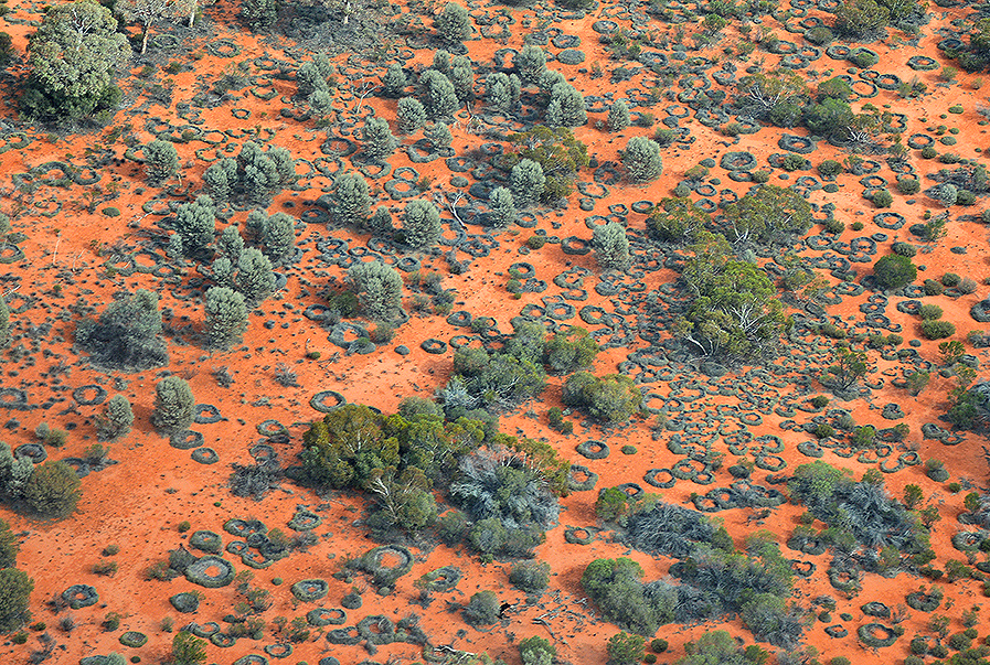 Spinifex country : Aboriginal territory