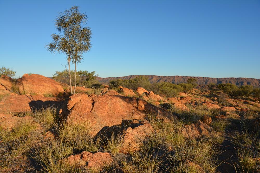 Hauteur des collines à Alice Springs
