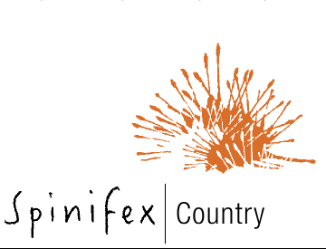 Spinifex art project