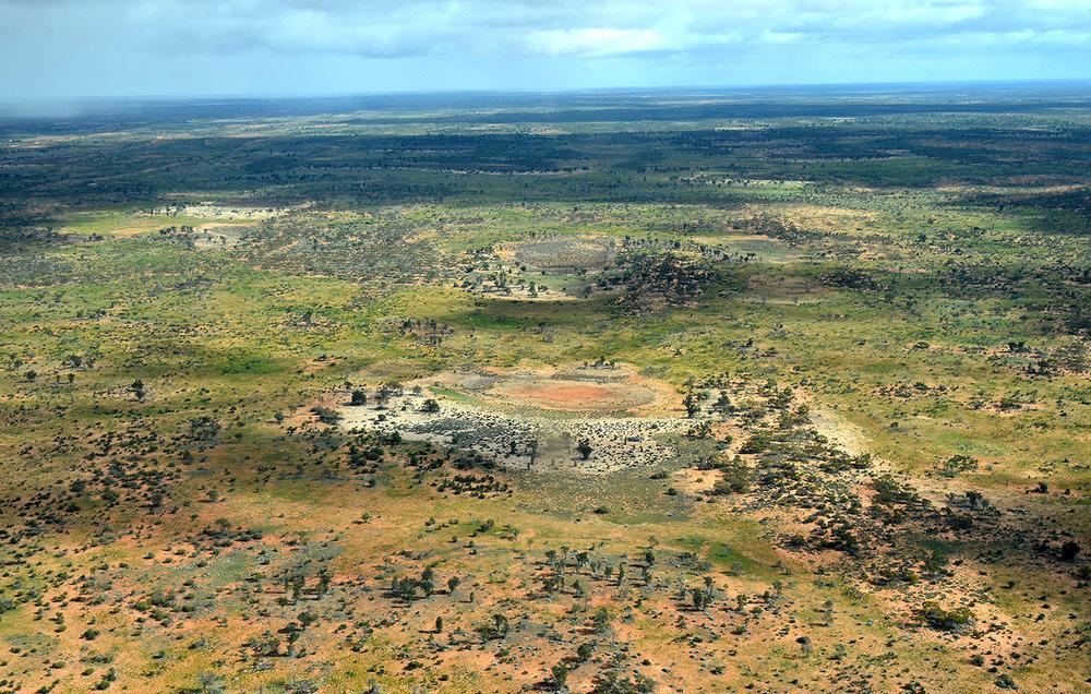 Vue du désert central Australien. Hiver 2014. © Photo : Aboriginal Signature • Estrangin Gallery