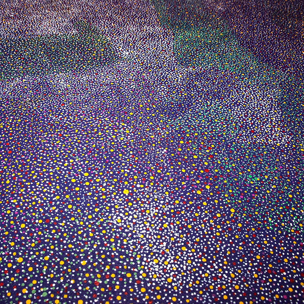 Détail d'une peinture de l'artiste Angelina Kngale. Titre : Rêve de la prune sauvage. Format : 120 x 120 cm. © Photo : Aboriginal Signature • Estrangin gallery with the courtesy of the artist.
