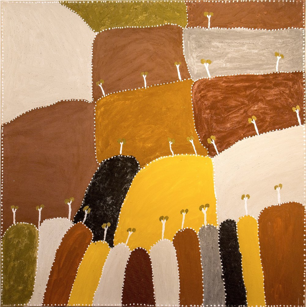 Peinture de l'artiste  Patrick Mung Mung - Ngarrgooroon country - 120 x 120 cm  © photo : Aboriginal Signature Estrangin gallery with the courtesy of the artist and Warmun Arts.