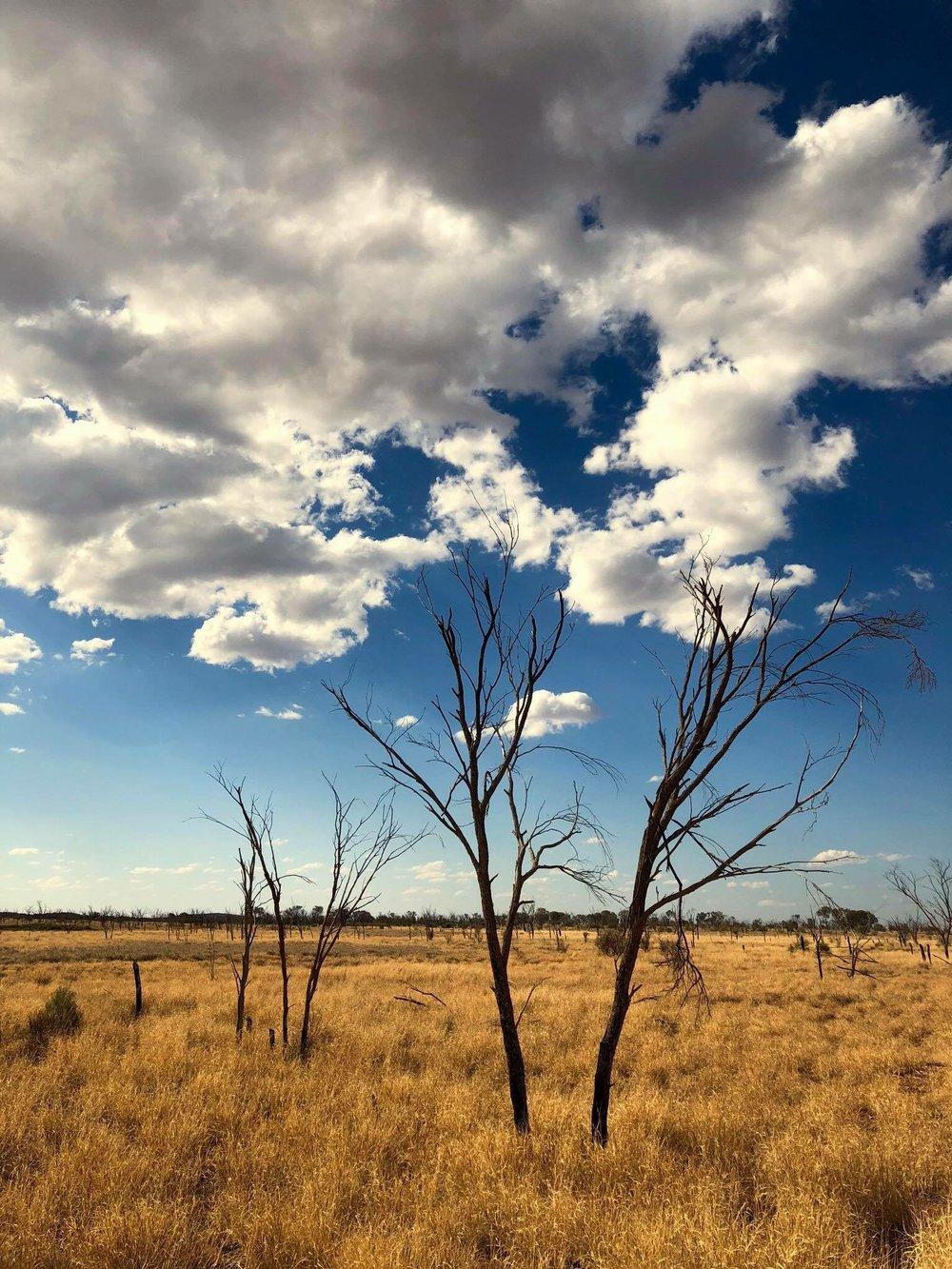Périple dans les déserts Australiens. Eté 2018. © Photo : Aboriginal Signature Estrangin gallery.