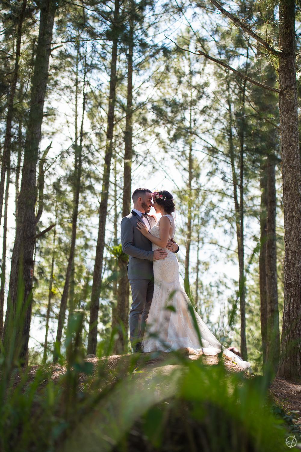 4-bosque-pinos-cayey-puerto-rico-boda.jpg