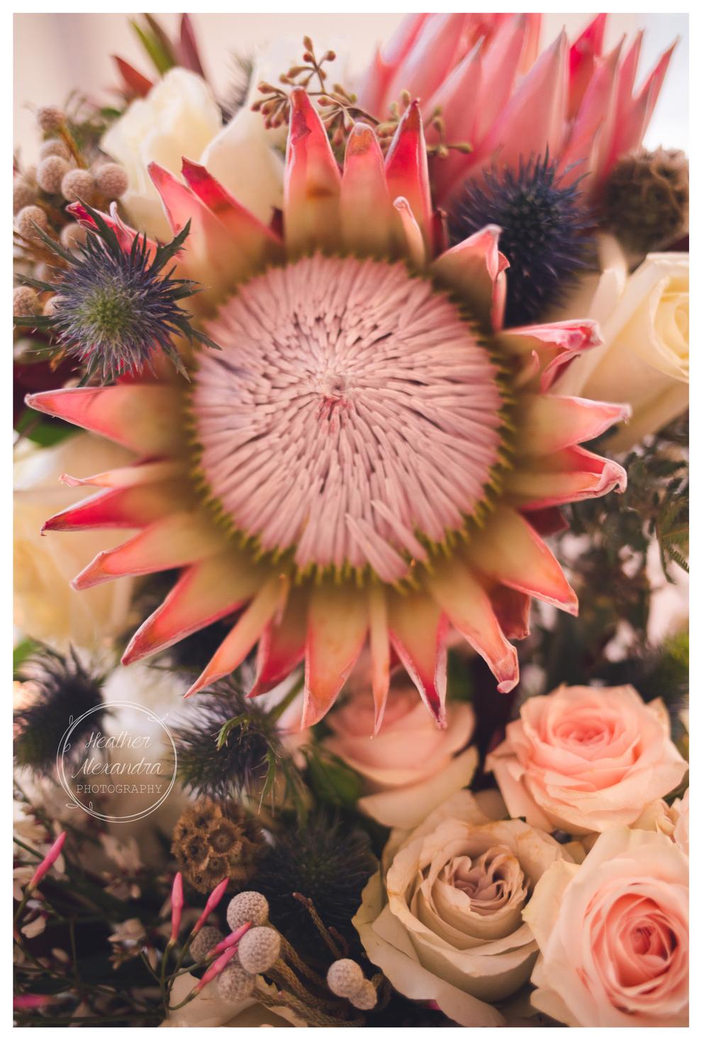 floralart6.jpg