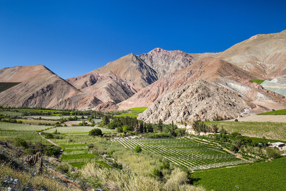 valle-del-elqui-pisco-chile