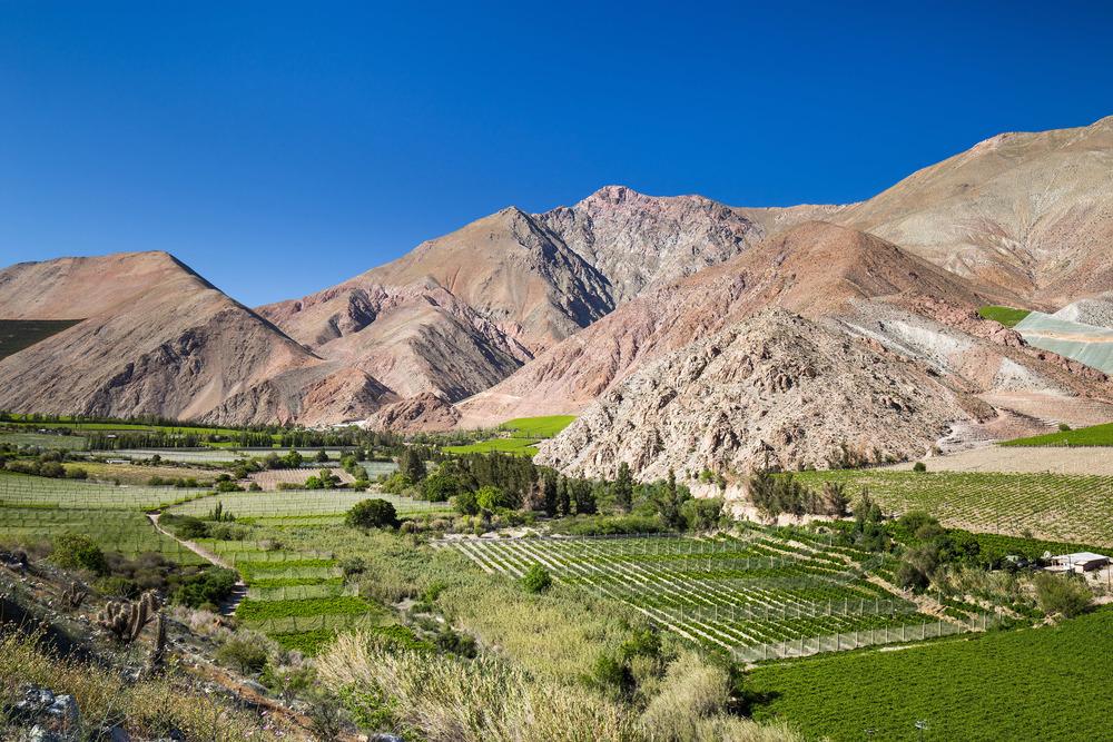 valle-del-elqui-pisco-chile