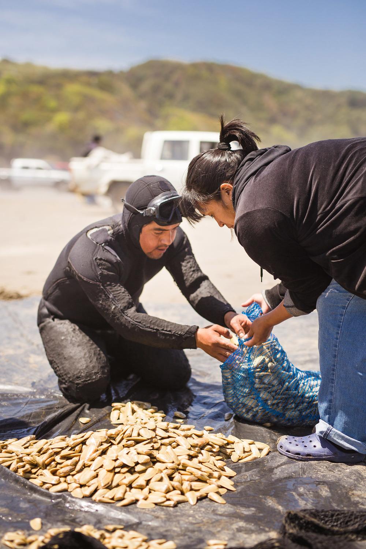 chile-chiloe-fishermen-beach-ocean-8