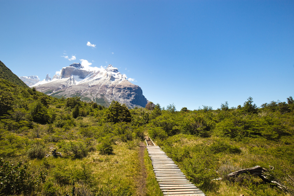 Wedding-Travellers-Overlanding-Destination-Wedding-Chile-Torres-del-Paine-Valle-Frances-Valley-French-snow-ice-mountain-glacial-forest-trail-path