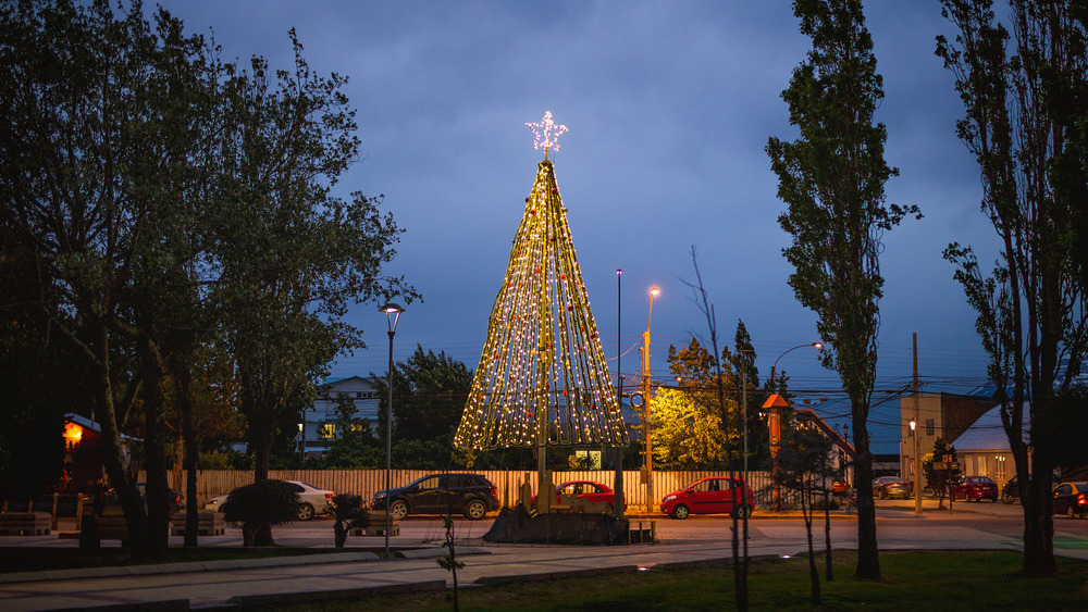 Wedding-Travellers-Destination-Wedding-Overlanding-Puerto-Natales-Chile-city-night-christmas-tree-light