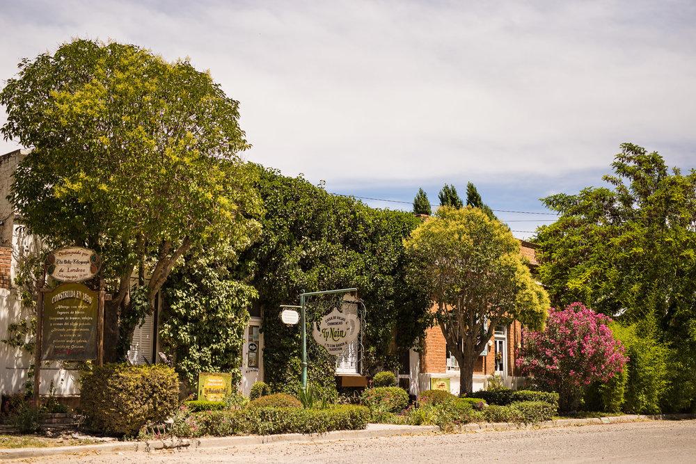 wedding-travellers-argentina-gaiman-tea-house